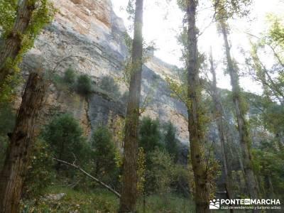 Hoces del Río Duratón - Villa y Tierra de Sepúlveda; nivel medio